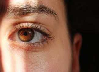 Diabetic Retinopathy - New Target Found
