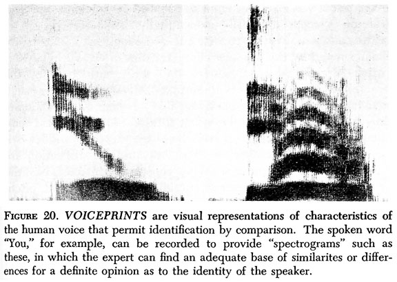 DIAGRAM :: Figure 20. Voiceprints