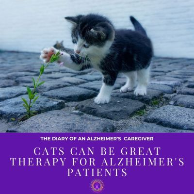 Cats Can Be Great Therapy For Alzheimer's Patients