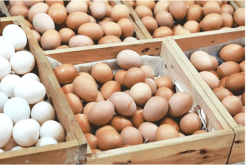 what-to-eat-for-egg-health-quality-ivf