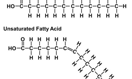 Unsaturated fat is protective against LDL oxidation as compared to saturated fat: a tale of two studies