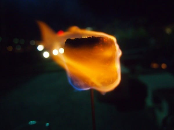 flaming marshmallow the digest