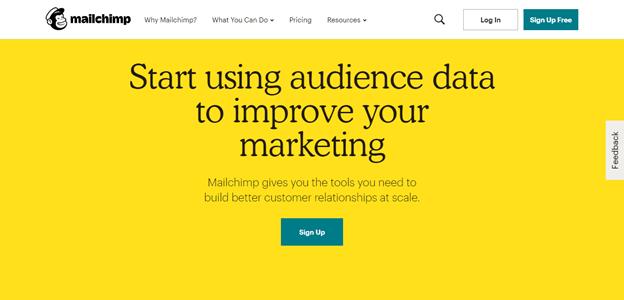 mailchimp audience data
