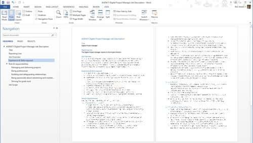 Job descriptions: All Project Management Office Positions