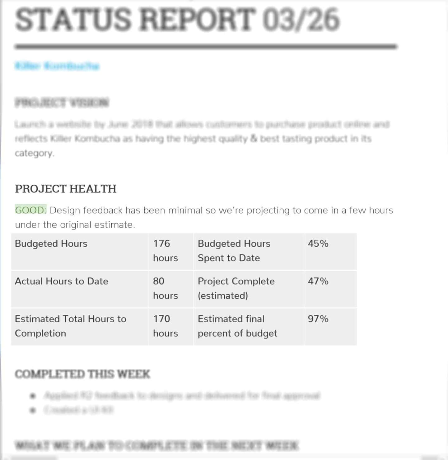 Weekly Project Status Report Example - Project Health