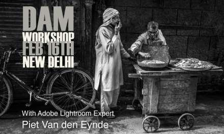 Another DAM Workshop!
