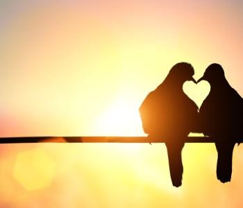 Love just is [Gedicht]