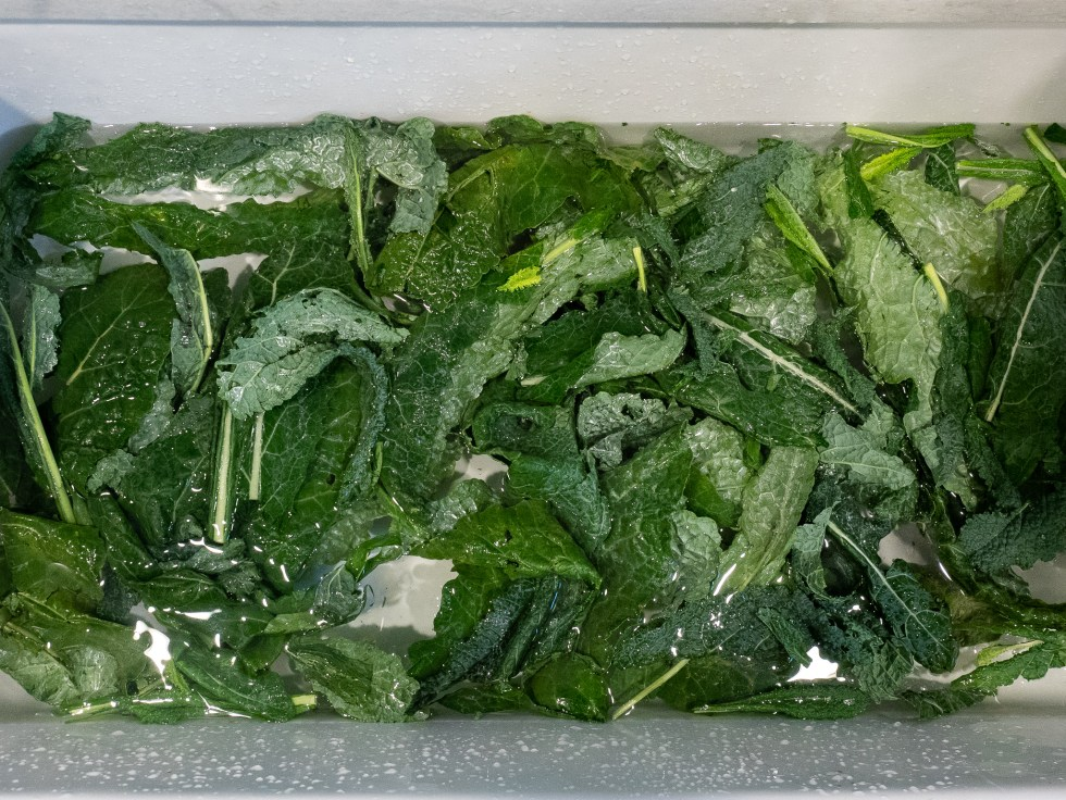 kale being washed in the sink