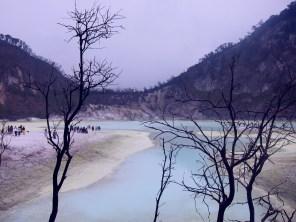 Barren trees surrounding the acidic crater lake.