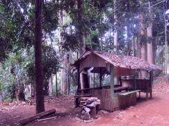 An abandoned hut.