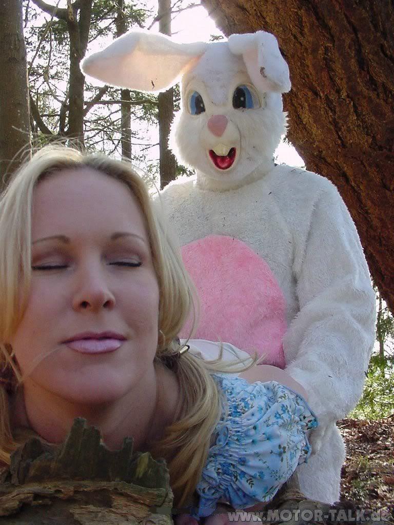Dirty Easter Bunny : dirty, easter, bunny, Easter, Bunny, DIRTY, TURBAN
