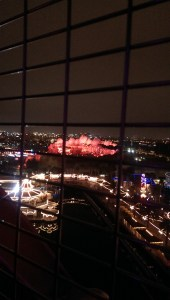 One of the fabulous views from Mickey's Fun Wheel at night!