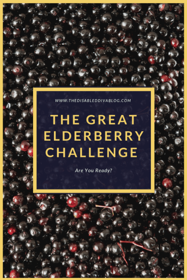 The great elderberry challenge