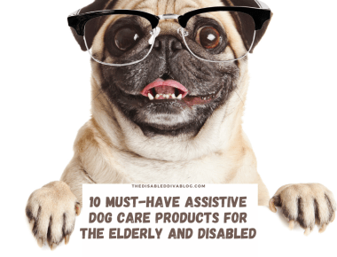 Pet ownership can be difficult for the elderly and disabled without the right assistive dog care products. Here are 10 that make it easy!