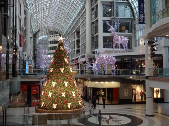 Big cities are exciting at Christmas! The Eaton Centre in downtown Toronto is always dressed for the season and when you can walk through after hours, the Swarovski tree gleams just for you.
