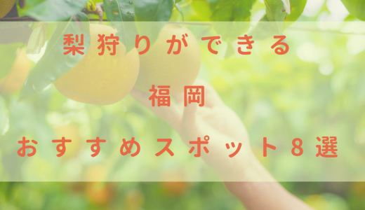梨狩りができる福岡のおすすめスポット8選!今年はココで決まり♪