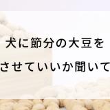 犬に節分の大豆を食べさせていいか聞いてみた