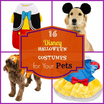 Photo Credit and Directions  sc 1 st  the Disney Driven Life & Disney Themed Halloween Costumes | the Disney Driven Life