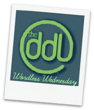 wordless wednesday logo