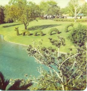 MagicSerpent topiary magic kingdom