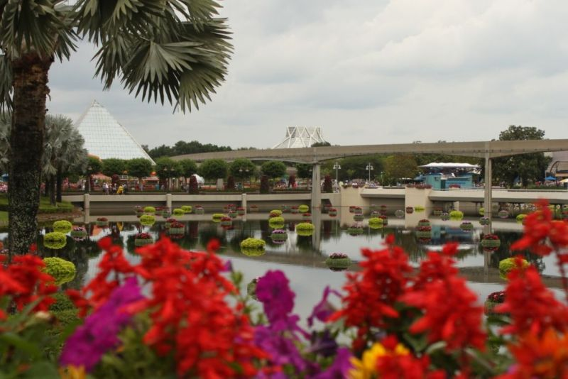 FloatingGarden epcot flower & garden wordless wednesday