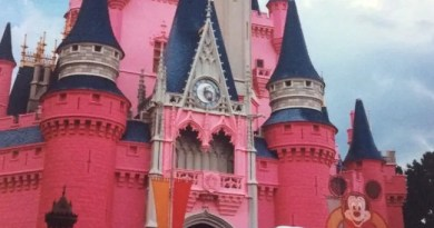Cinderella Castle Cake - throwback thursday
