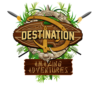 DESTINATION D LOGO