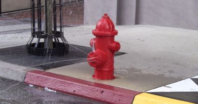Disney Hollywood Studios - Streets of New York Fire Hydrant