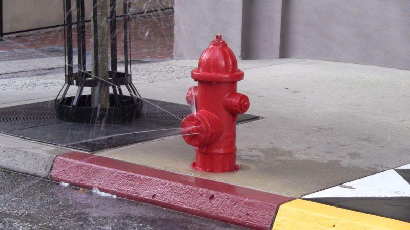 Disney Hollywood Studios - Streets of New York Fire Hydrant