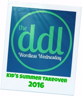 Wordless Wednesday Summer Logo