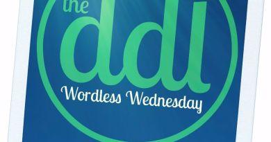 Wordless Wednesday Summer Logo