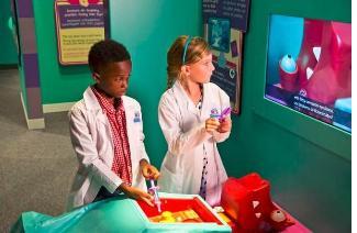 Doc McStuffins Childrens Exhibit