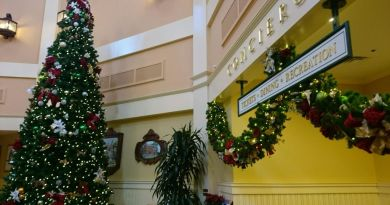 Christmas Check In - Wordless Wednesday
