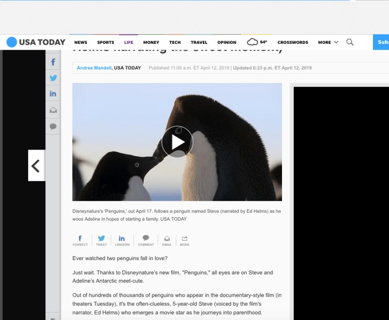 penguins USA Today