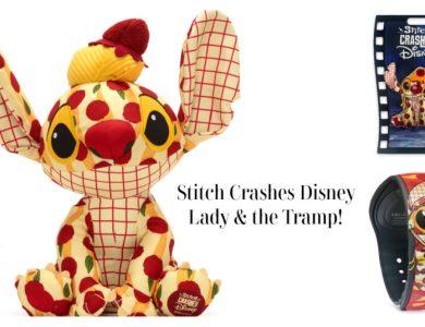 Stitch Lady & the Tramp