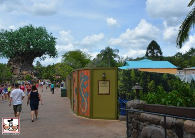 """Lots of Walls at Animal Kingdom. As soon as you cross the bridge from the Oasis to Discovery Island the right side is covered... The future home of """"Starbucks"""""""