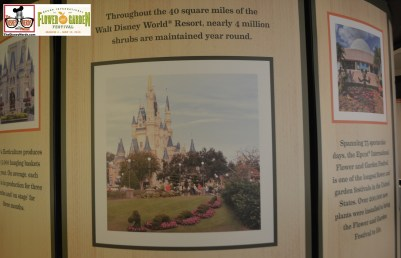 "Inside the Festival Center is a wonderful ""Horticulture Heritage"" Exhibit located inside the Festival Center - A wonderful look at the History of the Flower and Garden Festival - Epcot International Flower and Garden Festival 2015"