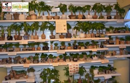 Merchandise - Epcot International Flower and Garden Festival 2015
