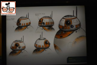 2015-12 - Hollywood Studios -Star Wars Posters cover the queue - the posters cover everything in the star wars universe. - BB8