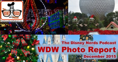 The Disney Nerds Podcast December 2015 Photo Report