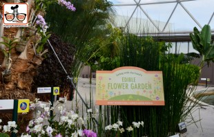 "DNP April 2016 Photo Report: Living with the Land is still open - featuring ""Flower and Garden Edible Gardens"""