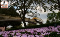 DNP April 2016 Photo Report: Monorail