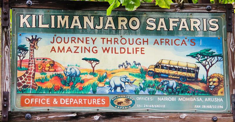 Disney S Kilimanjaro Safari Rare Sightings The Disney