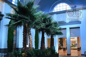 The Newly remodeled Dolphin lobby entrance - Shooting stars included.