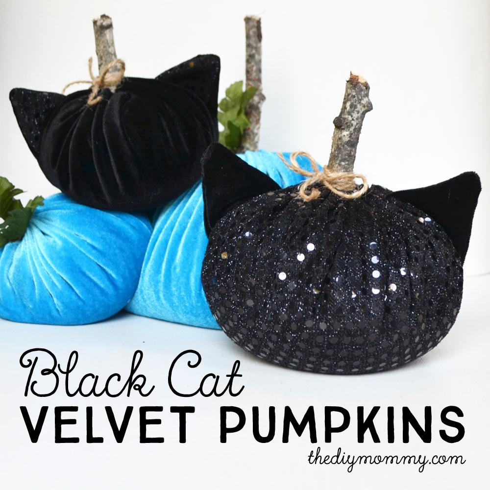 Make Black Cat Velvet Pumpkins  8 More DIY Halloween Ideas