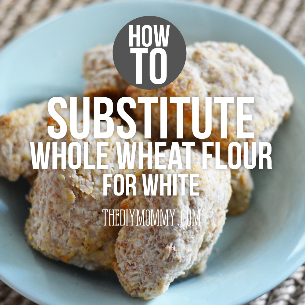 Whole Wheat Biscuits + How I Substitute Whole Wheat Flour ...