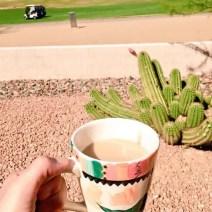 Coffee cactus travel Arizone