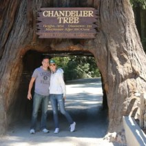 bridget matt travel redwood