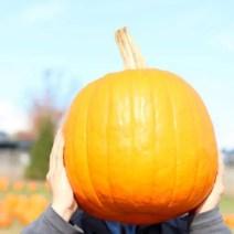 02-pumpkin-ryan-bengstons