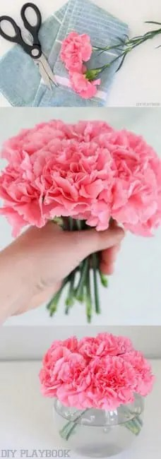 How to Cut and Style Carnations